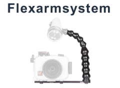 Flexarms